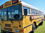 Lot: 100 - 2001 IHC AmTran Bus