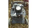 Lot: 30.HO - Black 6HP Briggs & Stratton Lawn Mower