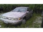 Lot: 101671 - 1995 Ford Taurus