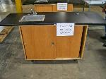 Lot: 541.LUB - PORTABLE SHOP SINK