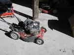 Lot: 82 - Robin 22in Self Propelled mower