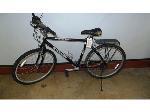 Lot: 02-18753 - Trek 800 Bike
