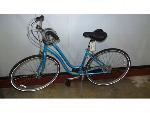 Lot: 02-18934 - Jamis Citizen Bike