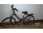 Lot: 02-18936 - Raleigh Venture Bike