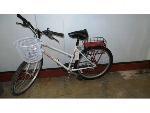 Lot: 02-18945 - Trek Antelope Bike