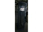 Lot: 971 - Dell Server Rack