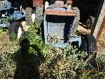 Lot: 20 - 1965 FORD 2000 TRACTOR 21022A