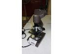 Lot: 02-18998 - Collegiate Microscope