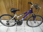 Lot: A6179 - Roadmaster MT. Sport SX Adult Mountain Bike