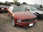 Lot: 13-898206 - 2005 FORD MUSTANG