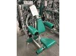Lot: 09 - BodyMasters 321 Lateral Raise Machine