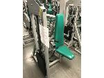 Lot: 12 - BodyMasters 420 Triceps Press