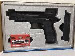 Lot: E495 - CO2 POWERED AIR GUN