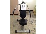Lot: 17 - Steelflex Shoulder Press Machine