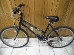 Lot: A6314 - Schwinn Frontier Adult Mountain Bike