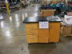 Lot: 575 - Portable Science Sink