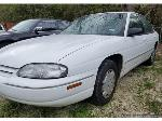 Lot: 111 - 1999 Chevrolet Lumina- Runs