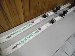 Lot: A6679 - Pair of Salomon Adult Snow Skis