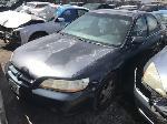 Lot: 262675 - 1998 Honda Accord
