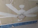 Lot: E743 - 52-IN CEILING FAN