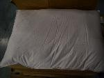 Lot: 433 - (10) Down Pillows & (2) Down Comforters