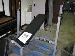 Lot: 23.I35 - Incline Workout Bench