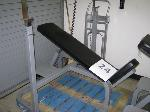 Lot: 24.I35 - Incline Workout Bench
