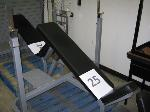 Lot: 25.I35 - Incline Workout Bench