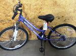Lot: 02-20461 - Roadmaster Granite Peak Bicycle