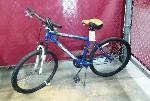 Lot: RL 02-20364 - Roadmaster Mt. Sport SX Bike