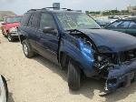 Lot: 30-230954 - 2002 Chevrolet Trailblazer SUV