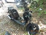 Lot: 2.FW - 2013 TAO TAO SCOOTER