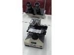 Lot: 02-20706 - Olympus Microscope