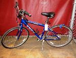 Lot: 02-20763 - Trek Multitrak 7300 Bike