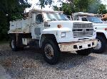 Lot: 126 - 1990 FORD F800 DUMP TRUCK