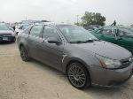 Lot: 10-204923 - 2010 FORD FOCUS SES
