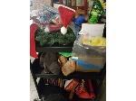 Lot: 31,32&33.PU - Seasonal Decroations, Toys, Stage Holder & Bookshelf