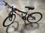 Lot: 02-20986 - Roadmaster Granite Peak Bicycle