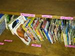 Lot: 16&17.BEA - Bookcase, Books, Magazines & Wooden File Cabinet
