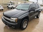 Lot: 17 - 2004 Chevy Trailblazer SUV