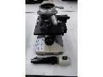 Lot: 02-21028 - Olympus Microscope