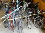 Lot: 02-21061 - (15) Bicycles