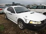Lot: 53-222426 - 1999 FORD  MUSTANG