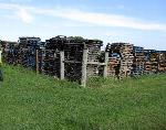 Lot: 1 - (APPROX. 1150)  WOODEN PALLETS