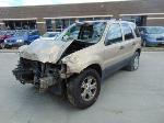 Lot: B8070804 - 2007 FORD ESCAPE XLT SUV