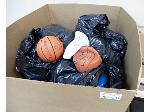 Lot: 02-21363 - Sport Balls