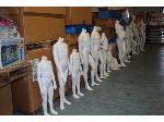 Lot: 893 - (25) Mannequins