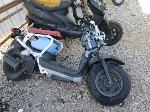 Lot: 1210-10 - 2013 HONDA MOTORCYCLE