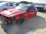 Lot: 29-221146 - 2004 FORD MUSTANG COBRA