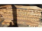 Lot: 02-21708 - (Approx 50) Sheets of Plywood